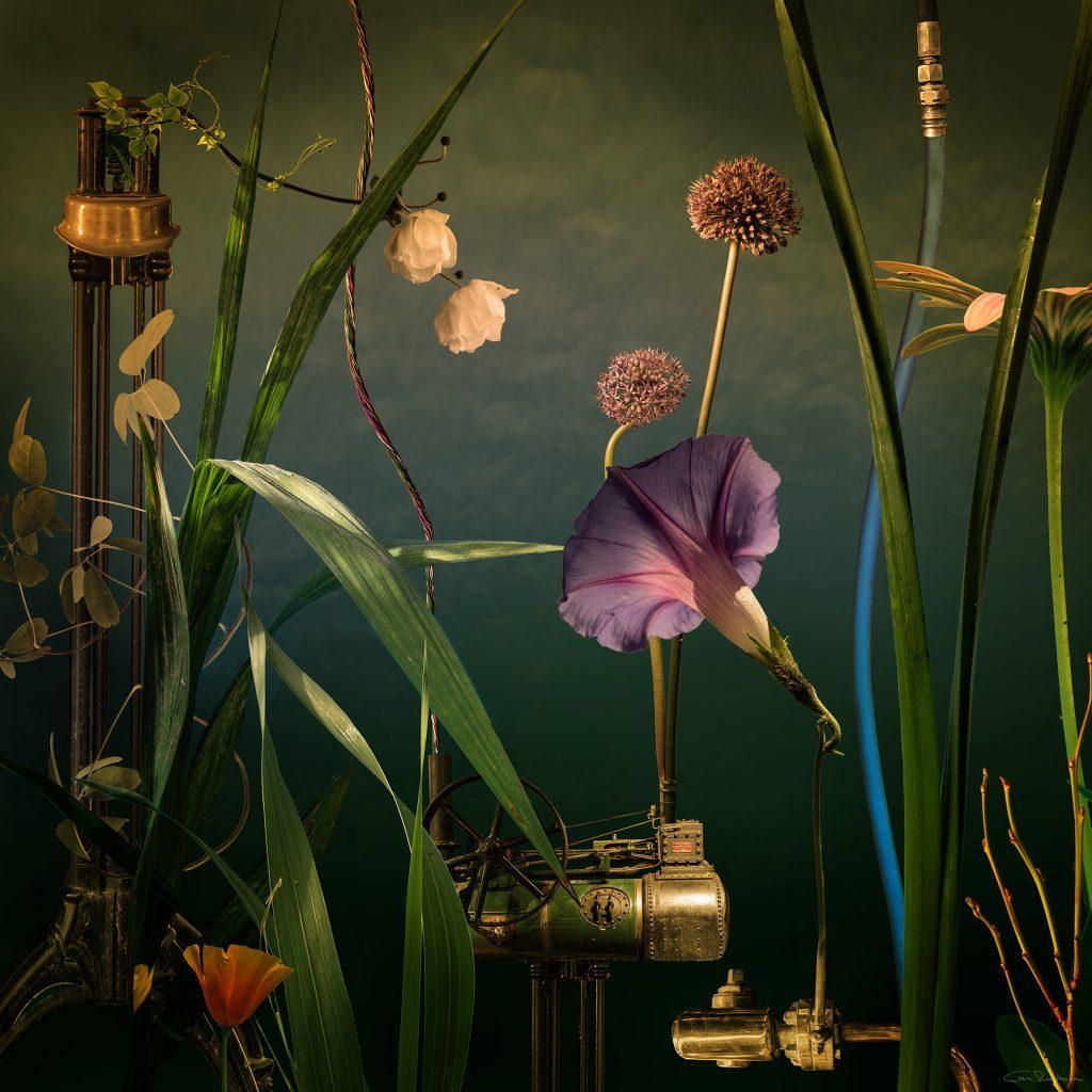Botanic Engine - Habitat By Cas Slagboom