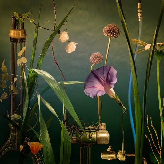Cas Slagboom | Serie Habitat